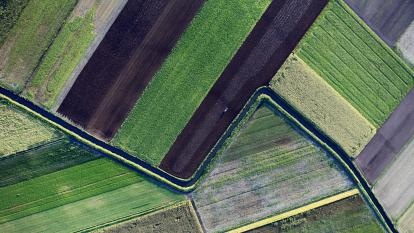 Farmland aerial view