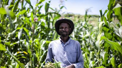 Farmer standing in field