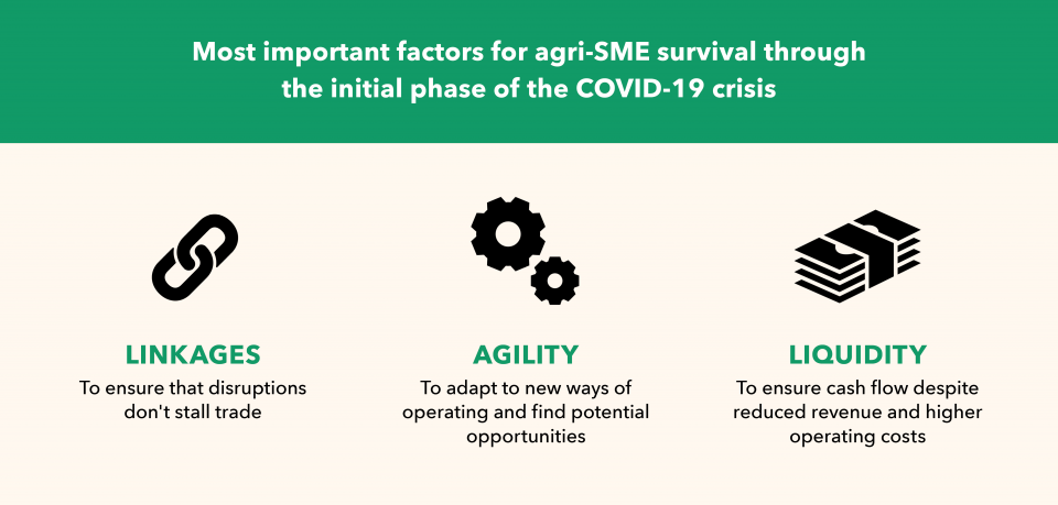 Most important factors for agri-SME survival through the initial phase of the COVID-19 crisis