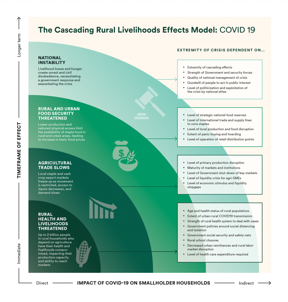 The Cascading Rural Livelihoods Effects Model: COVID-19